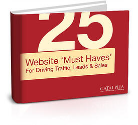Download > 25 Website Must Haves