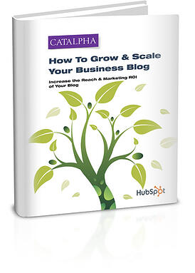DOWNLOAD --> How To Grow and Scale a Business Blog