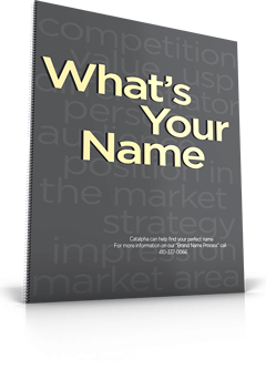 naming-worksheet-whats-your-name-hero
